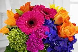Amazing Colours Vase